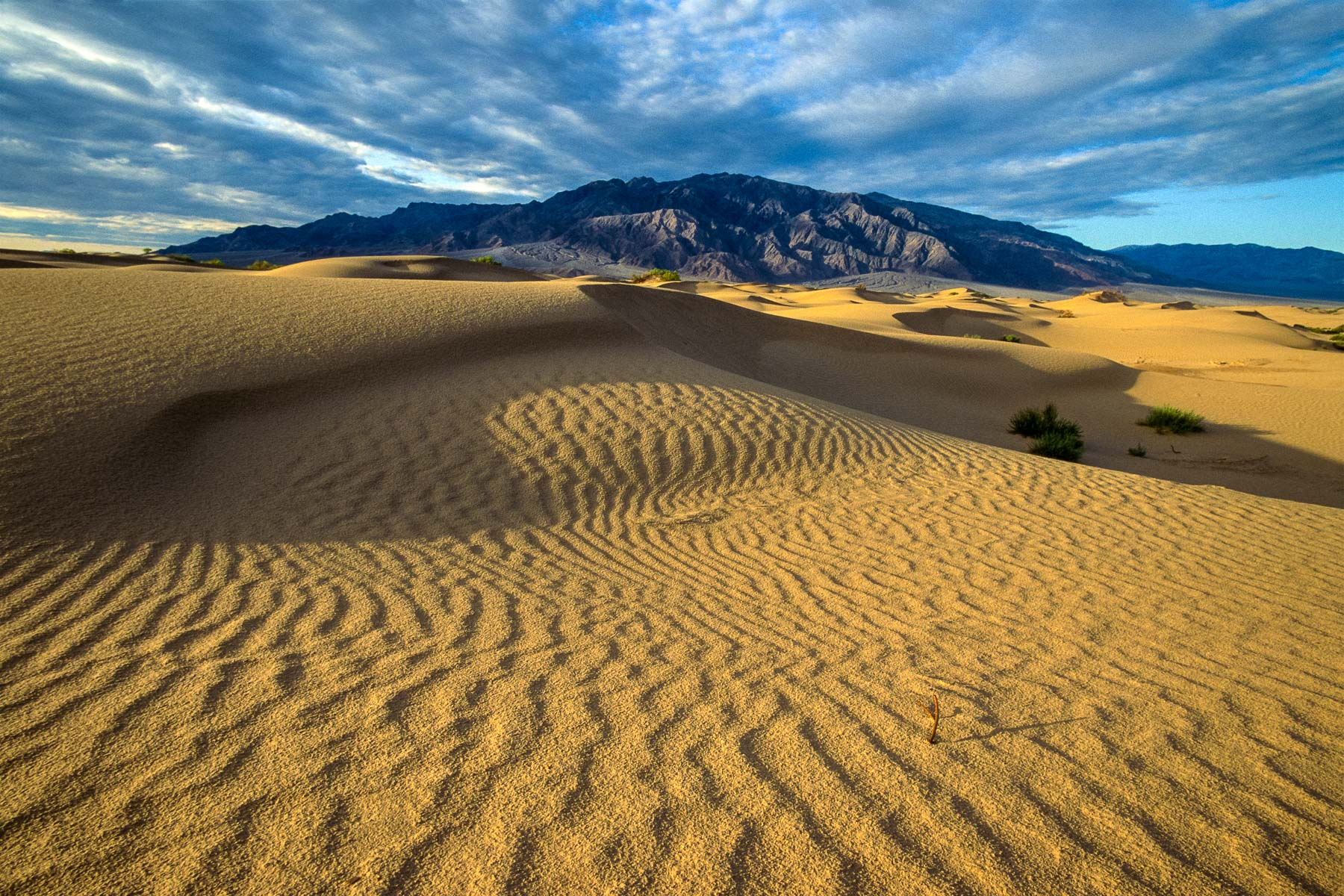 JohnMacLean_1991_Death_Valley_dunes_PF