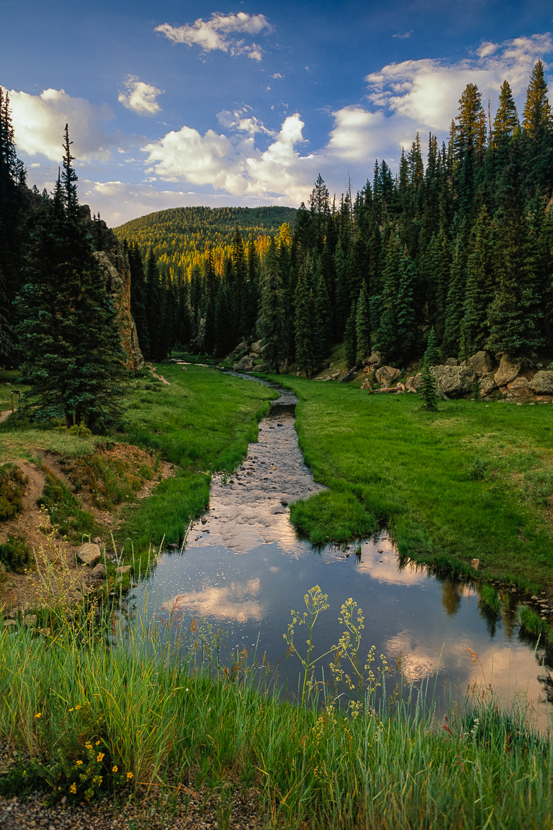 JohnMacLean_Jemez_stream_PF